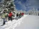 Schneeschuhwandern 1