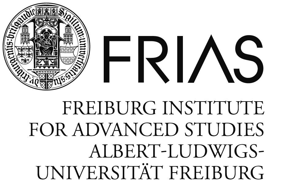 FRIAS Logo
